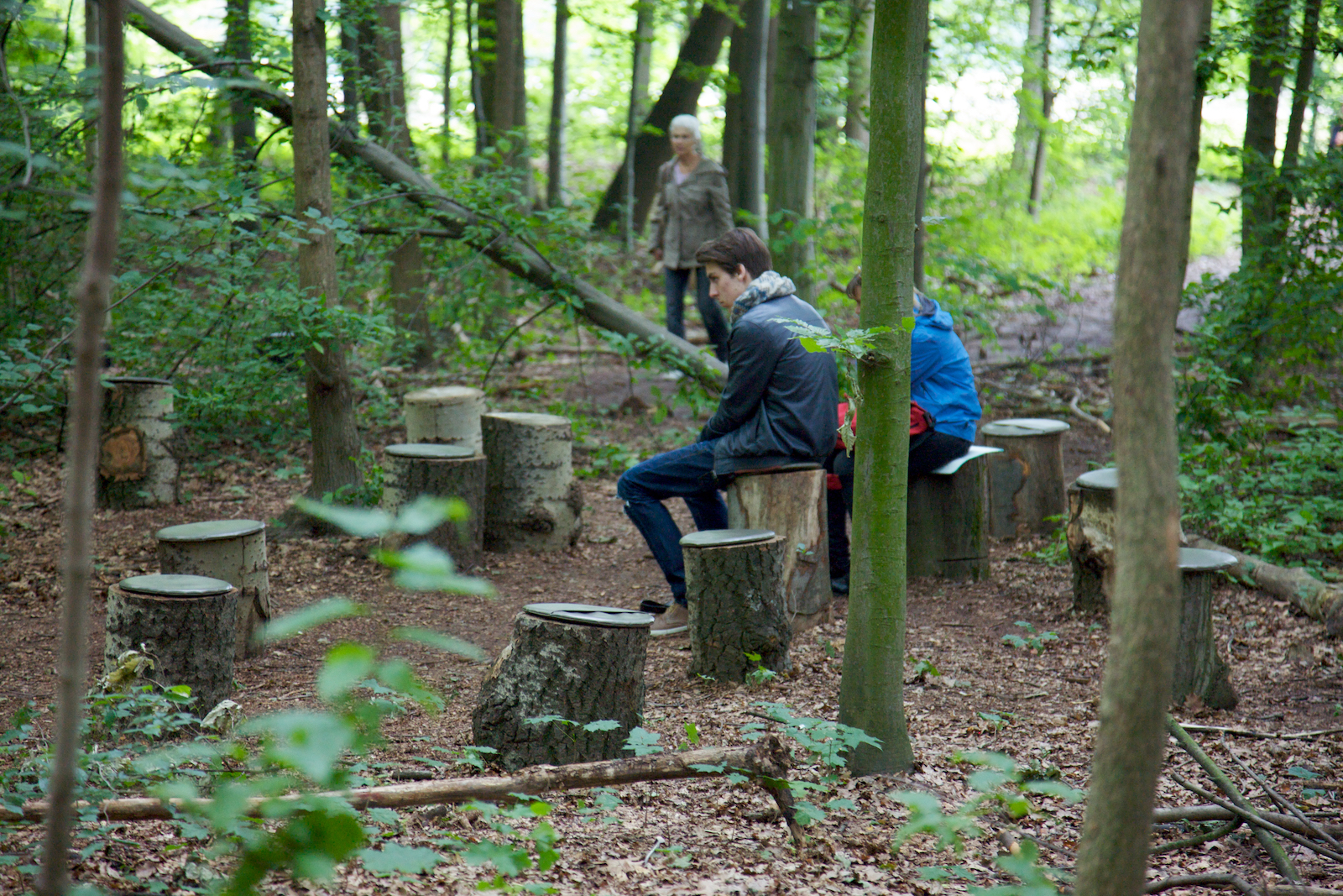 Janet Cardiff George Bures Miller FOREST For A Thousand Years