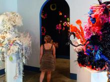 Institute For Figuring's Crochet Coral Reef project, 2005-ongoing. Photo © the IFF.