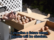 Video still from Planting Abolition by Color Study Group