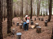Janet Cardiff & George Bures Miller, FOREST (for a thousand years...), Installation view from UC Santa Cruz Arboretum, 2018. Photo credit: Lewis Watts