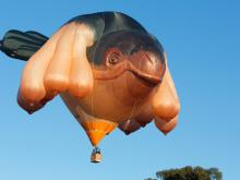 Skywhale by Patricia Piccinini