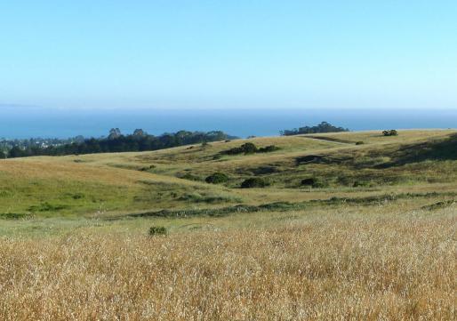 View of the Great Meadow and Monterey Bay from the site area