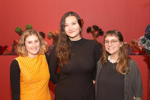 Lucy Ashton, Gracia Brown, and Sophia Dimatteo, IAS 2017 Student Interns