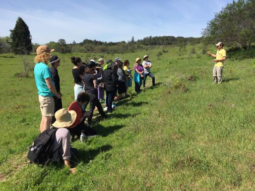 Rick Flores leads EXTRACTION visit to UCSC Arboretum's Amah-Mutsun Relearning Garden, 2017